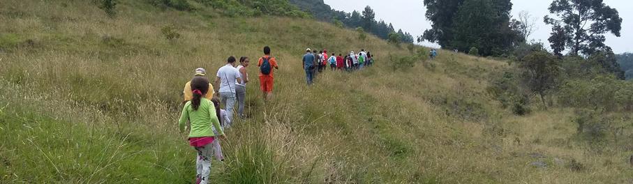 Caminatas ecológicas en familia